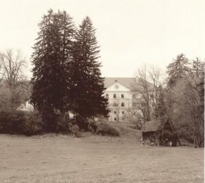 81. Schloss Lind an einem trüben Tag im Mai 1992